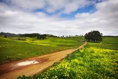 Countryside landscape Stock Photos