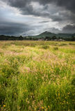Countryside landscape across to mountains. Beautiful landscape across countryside to mountains in distance with moody sky Stock Images