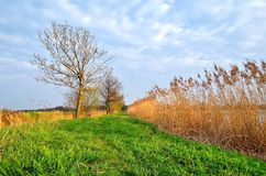 Countryside landscape in early spring. Royalty Free Stock Images