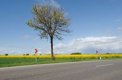 Countryside landscape and empty road stock photography