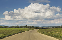 Countryside landscape with empty road Stock Image