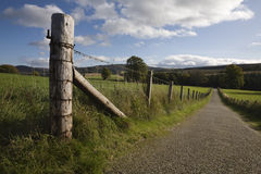 Countryside landscape with fenced road Royalty Free Stock Photo