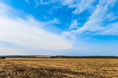 Countryside landscape. Field with removed harvested crop under the blue sky.