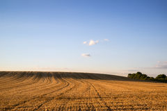 Countryside landscape of freshly harvested field on Summer day Royalty Free Stock Image