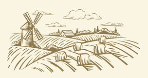 Vector countryside landscape. Countryside landscape with hay vector hand illustration Stock Photography