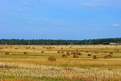 Countryside landscape with haystacks stock photo