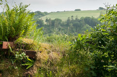 Countryside landscape through a hedge. View of rolling hills through a hedge Stock Photography