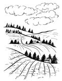Landscape ink sketch drawing. Rural engraved landscape with plowed fields and pine tree. Countryside landscape with hills, fields, trees Royalty Free Stock Photography
