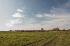 Countryside landscape with meadow and sky Royalty Free Stock Photo