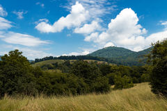 Countryside landscape with mountain, vineyard and trees Stock Photography