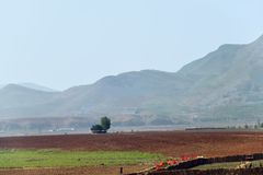 North Korea. Countryside. Countryside landscape, North Korea. Cultivated agricultural field and mountain at background stock images