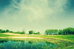 Countryside landscape with a pond Royalty Free Stock Image