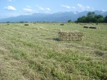 Countryside landscape with rectangular hay bales on field and mountain range in the distance Royalty Free Stock Photo