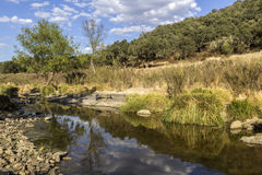 Countryside landscape scenic view of a fresh water stream Royalty Free Stock Images
