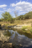 Countryside landscape scenic view of a fresh water stream Stock Photos