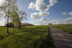 Countryside Landscape. A shiny landscape in the countryside Stock Photography