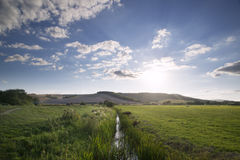 Countryside landscape of small stream flowing through reeds  Royalty Free Stock Image