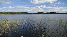 Countryside landscape with a smooth lake surface under blue sky with clouds. On a sunny summer day stock video footage