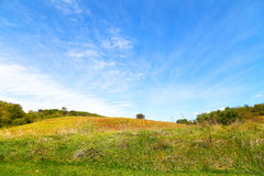 Countryside landscape in summer. Stock Photos