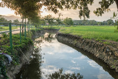 Countryside landscape before sunset. Countryside rice fields and river HDR Stock Photos