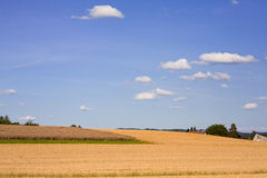 Countryside Landscape in Switzerland. Countryside in Switzerland on a warm sunny autumn day Royalty Free Stock Image