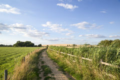 Countryside landscape of track leading through fields on Summer Stock Photos