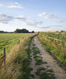 Countryside landscape of track leading through fields on Summer Royalty Free Stock Image