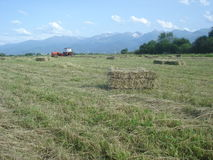 Countryside landscape with tractor gathering hay into rectangular bales Royalty Free Stock Photos