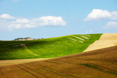 Countryside landscape in Tuscany region. Of Italy Royalty Free Stock Photography