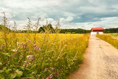 Countryside landscape in Vantaa Royalty Free Stock Images