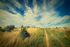 Countryside landscape Royalty Free Stock Image
