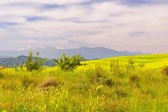 Aliano badlands views in Basilicata royalty free stock images