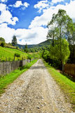 Countryside Lane Royalty Free Stock Photos