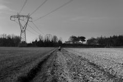 Countryside lonelyness Royalty Free Stock Photography