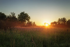 Countryside meadow in beautiful sunset Stock Photography