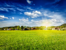 Countryside meadow field with sun and blue sky Royalty Free Stock Images