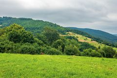 Countryside in mountain on a cloudy day. Countryside in mountain on a cloudy summer day. beautiful landscape with rural hay fields on hills near the forest stock images
