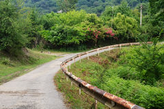 Countryside mountain road with rose bush and old rusty fence Stock Image