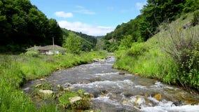 Countryside mountain stream stock video