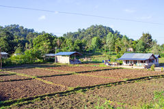 In the countryside from Myanmar Royalty Free Stock Photography