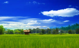 The Countryside Royalty Free Stock Image