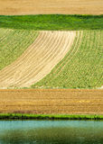 Countryside near Albi (France) Royalty Free Stock Photography