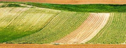 Countryside near Albi (France) Royalty Free Stock Photos