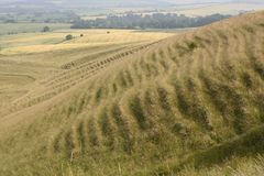 Countryside near Calne. Wiltshire. UK Royalty Free Stock Photos
