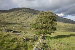 Countryside near Molls Gap; Killarney National Park Stock Photo