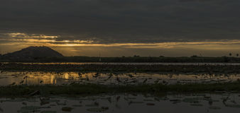 Countryside near Siem Reap town with sunset Stock Photography