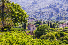 Countryside near Soller Stock Images