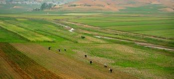 Countryside, North-Korea Stock Photography