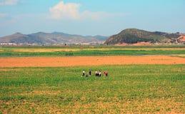 Countryside, North-Korea Stock Photos
