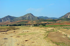Countryside, North-Korea Royalty Free Stock Image